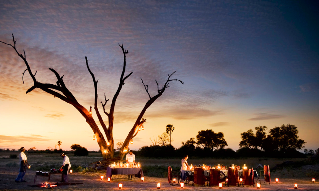 20 Tips for Planning the Ultimate Safari