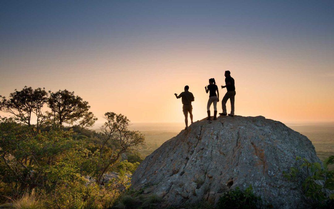 Our Top Easter Safari Ideas